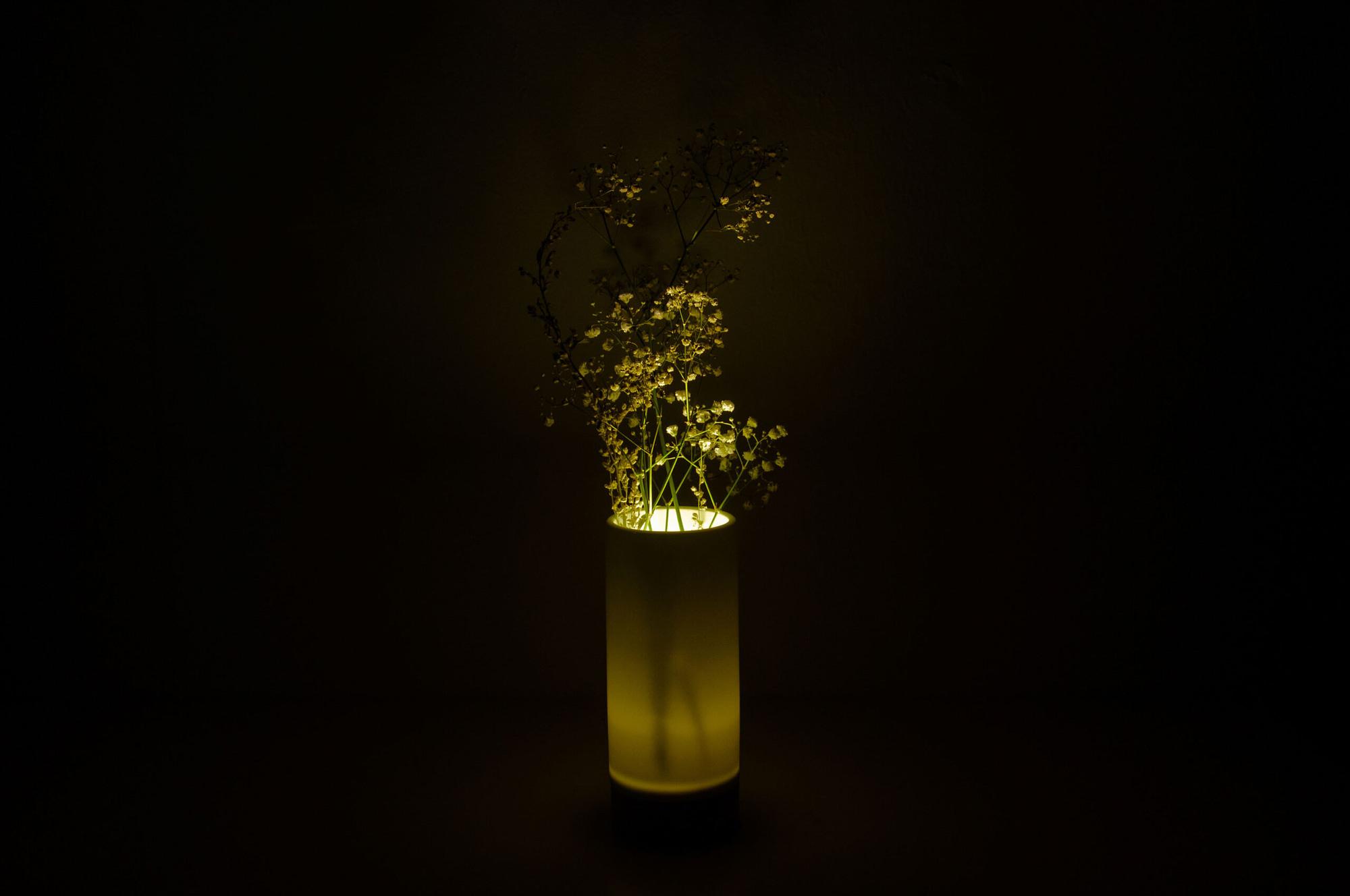 4.-Ray-Vase-4