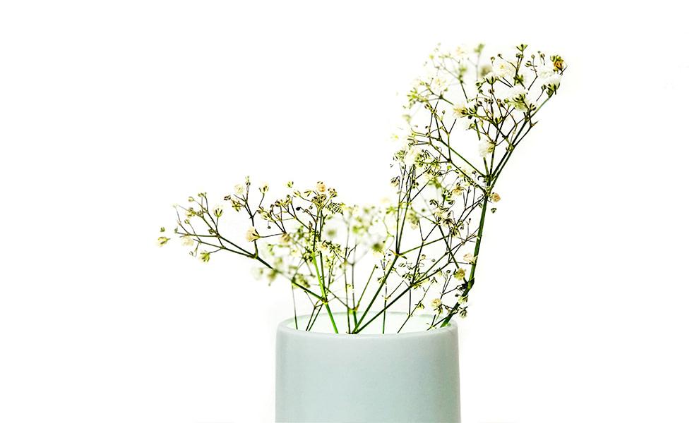 9.Ray-Vase