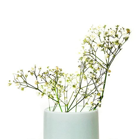 Ray Vase