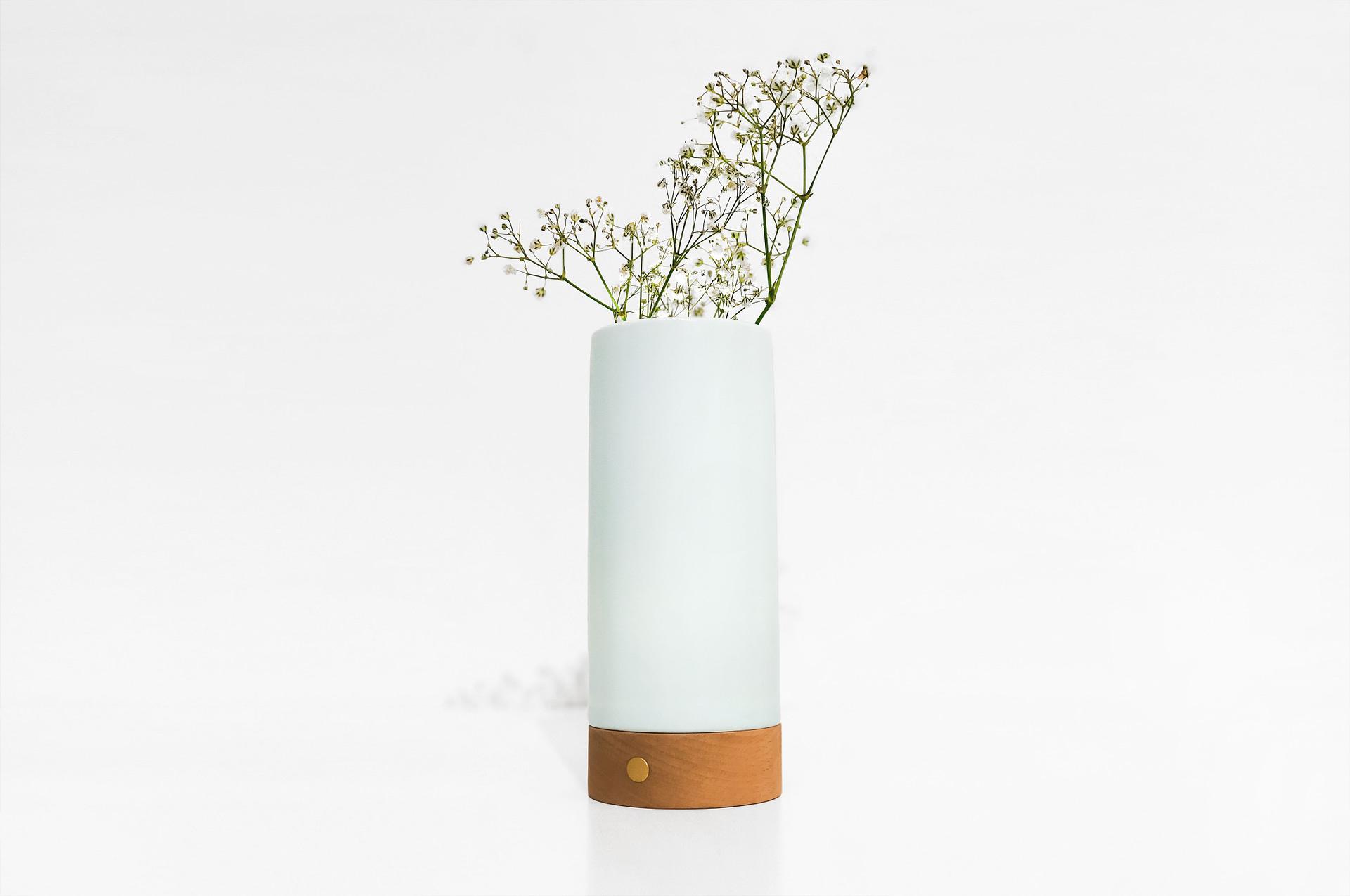 1.-Ray-Vase-1
